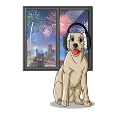 Fireworks And Dogs: One Dangerous Recipe | Innovet Pet