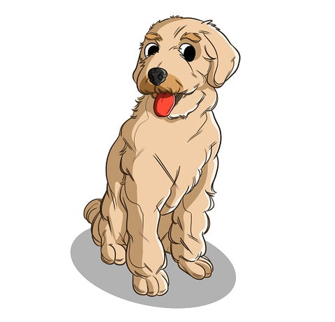Golden Doodle Breed And Personality Innovet Pet Products I