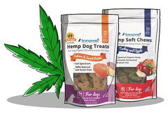 Why We Created Our Hemp Treats and Hemp Soft Chews For Dogs | Innovet Pet