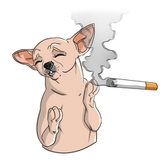 Symptoms of Secondhand Smoke in Dogs