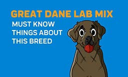 Must Know Things About Great Dane