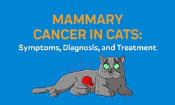 mammary cancer in cats