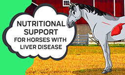 Nutritional Support For Horses With Liver Disease