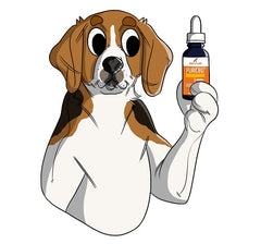 PurCBD Oil May Be Just What You've Been Looking For To Help Your Dog | Innovet Pet