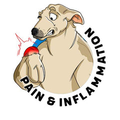 CBD for Pain & Inflammation in Dogs Scientific Research and Clinical Trials