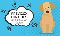 Previcox for Dogs: An All-Around Guide