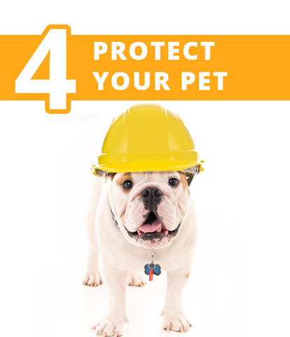 protect your pet