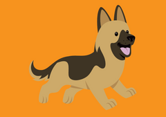 German Shepherd | Innovet Pet