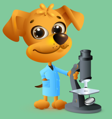 Garlic for Dogs Cartoon Graphic | Innovet