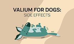 valium for dogs