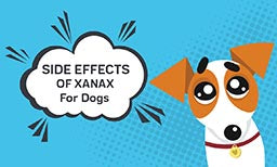 Xanax for dogs: Side Effects
