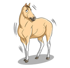 How CBD Oil Can Reduce Horse Anxiety | Innovet Pet