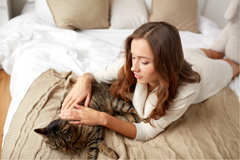 Managing Feline Asthma Using Hemp Oil | Innovet Pet