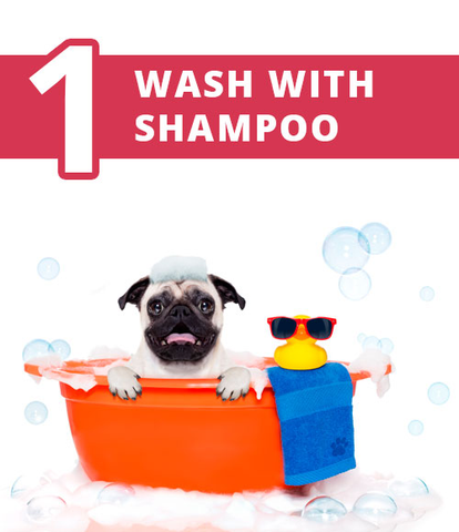 Wash with shampoo