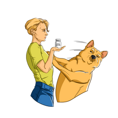 Natural pain relief for dogs| Innovet Pet