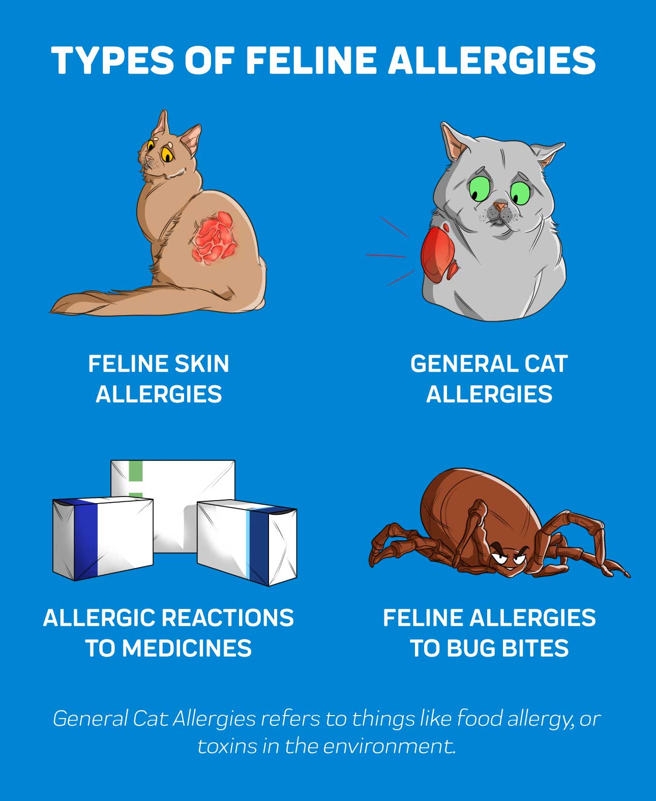 Types of Feline Allergies