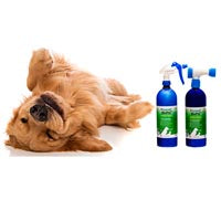 BioPel™ natural flea control