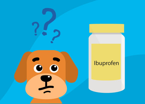 Ibuprofen For Dogs