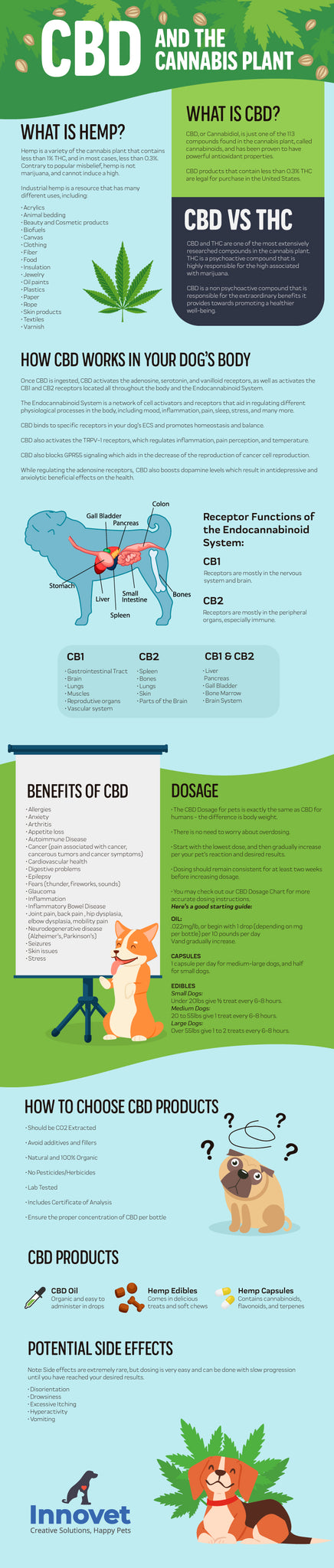 THC vs CBD - The Difference in an Infograph