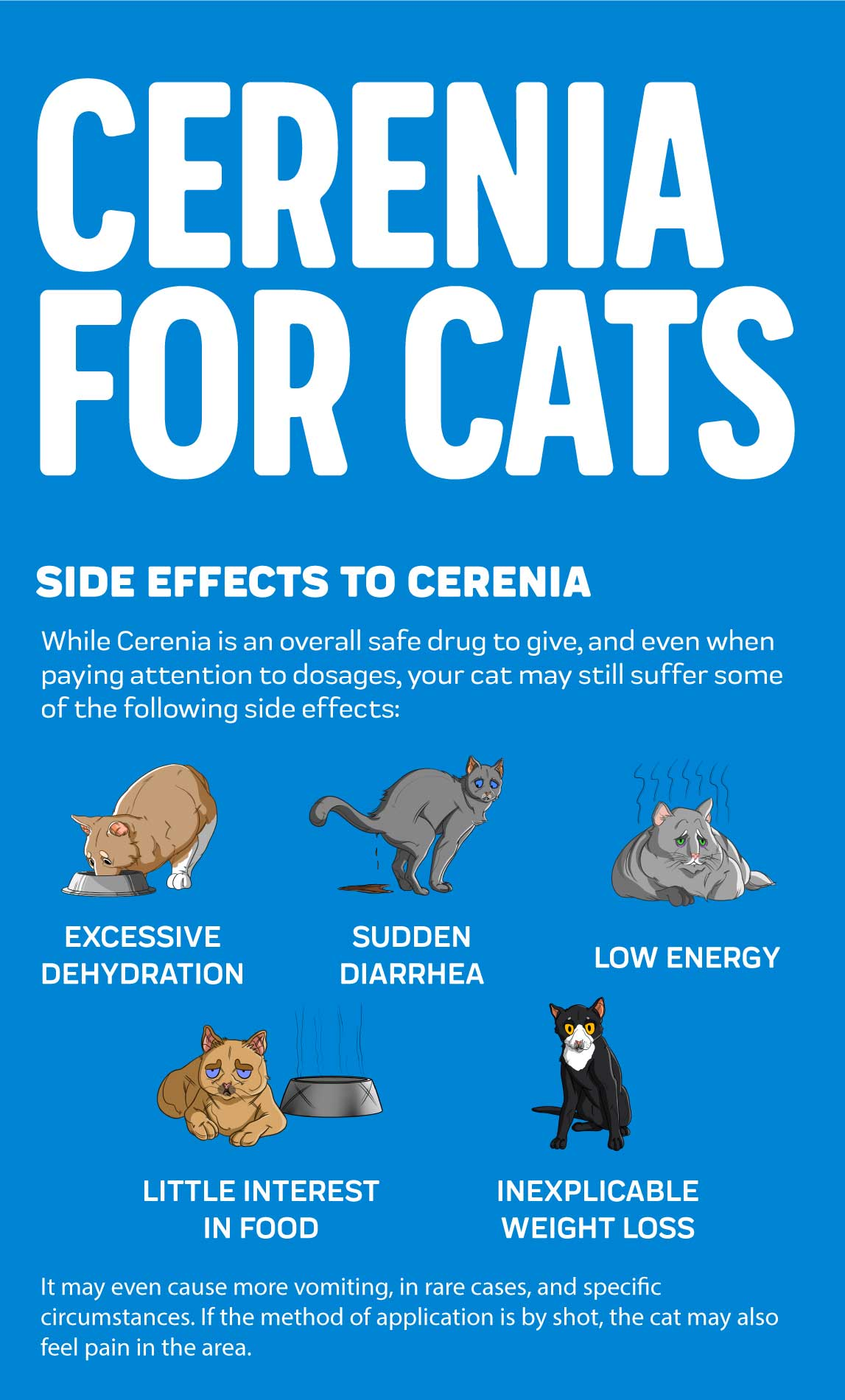 Cerenia Side Effects in Cats