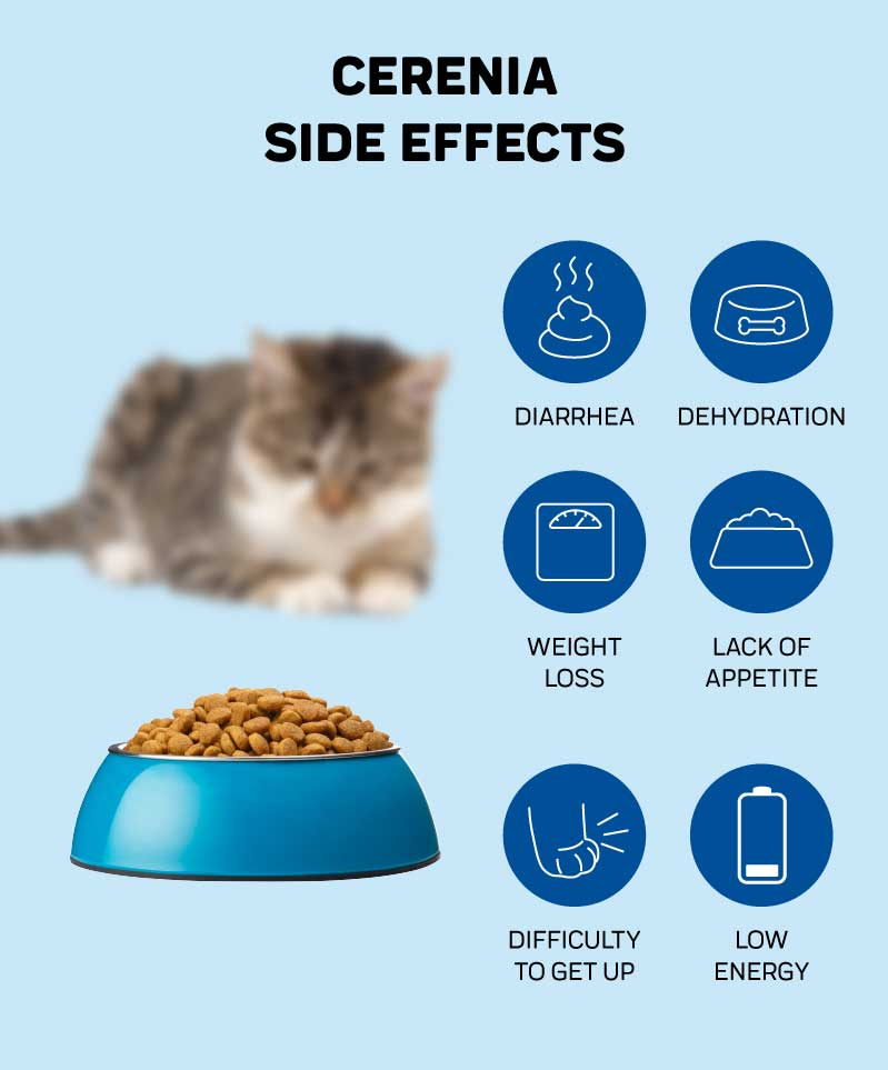 Cerenia Side Effects