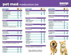 Can I give Over-the-Counter Medication to my Pets? | Innovet Pet