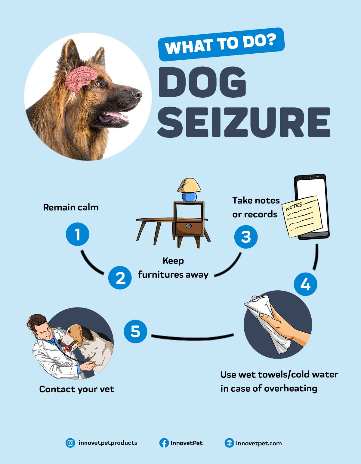 What should should I do when my dog is having a seizure