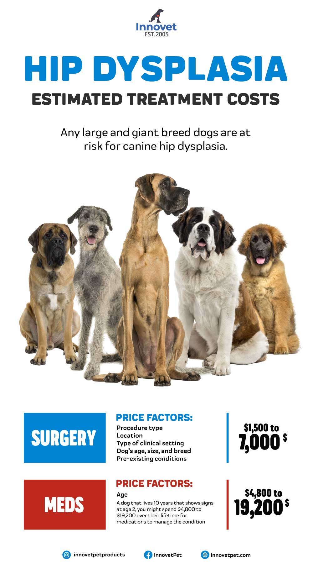 Hip Dysplasia in Dogs Treatment Costs