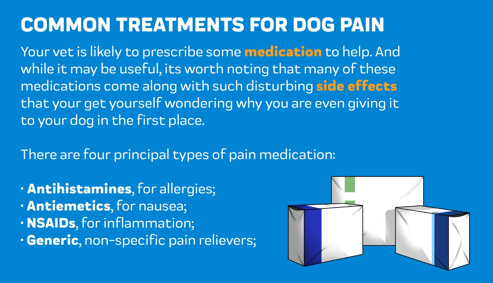 Common Treatments Dog joint Pain