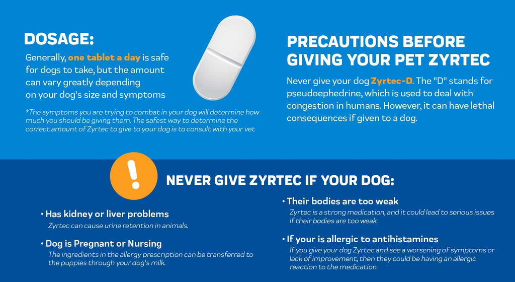 Never Give Zyrtec If Your Dog