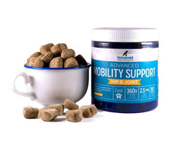 Mobility Support CBD Soft Chews for Dogs With Arthritis & Joint Issues | Innovet Pet