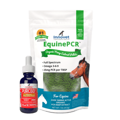PurCBD for horses | Innovet Pet