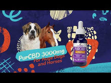 Load and play video in Gallery viewer, CBD Oil for Horses