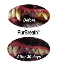 Load image into Gallery viewer, PurBreath No Brush. Pet Oral Care Gel - | Innovet Pet