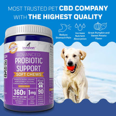 ADVANCED PROBIOTIC CHEWS | Innovet Pet