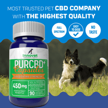Load image into Gallery viewer, Hemp CBD Capsules for Dogs - | Innovet Pet