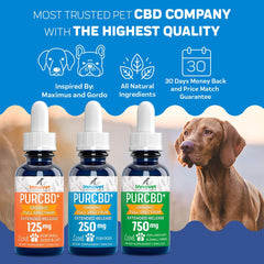 CBD Products for Pets | Innovet Pet