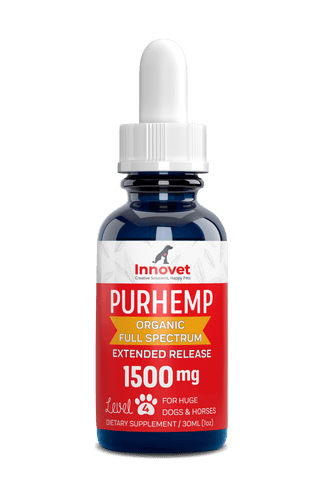 1500mg CBD Oil for Horses and Large Animals