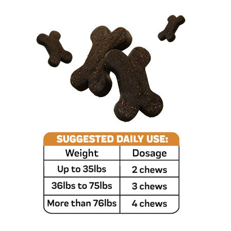Right Dosage of Probiotic Chews for Dogs, a product for your dog's digestive health