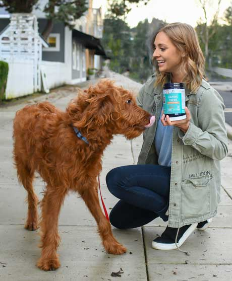 You can give Advanced Calming Chews to your stressed dog