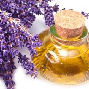 lavender oil to soothe your dog ear cleaning