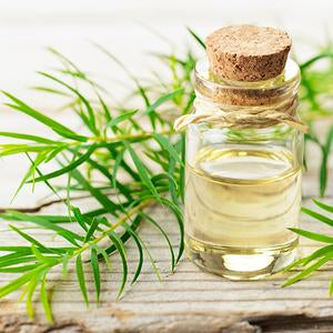 tea tree oil  helps ear infections and is safe for dog's ears