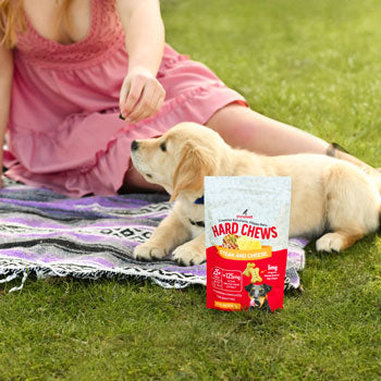 Best CBD Dog Treats by Innovet Pet Products
