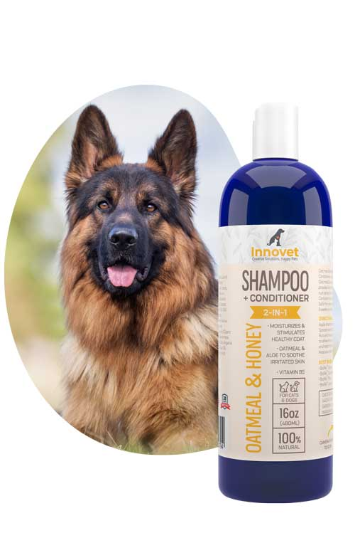 Oatmeal shampoo for dogs with conditioner for itchy skin