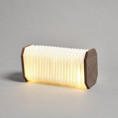 Accordion Light by Gingko