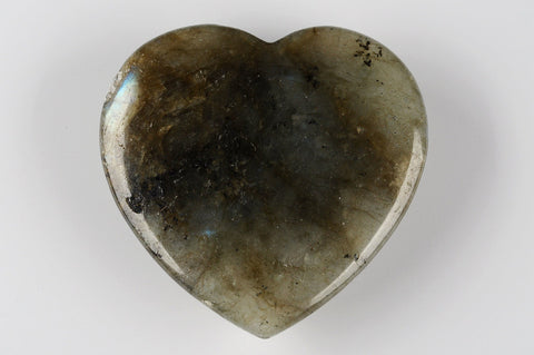 Love Stone | Labradorite - Natural History Direct Online Shop