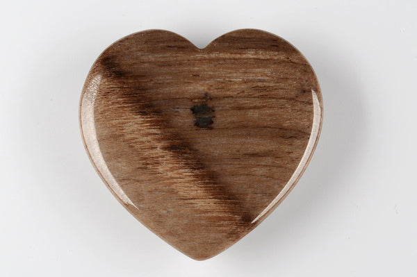 Heart petrified wood palm stone - Natural History Direct Online Shop