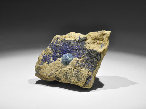 Natural History - Azurite with Malachite Mineral Specimen - Natural History Direct Online Shop