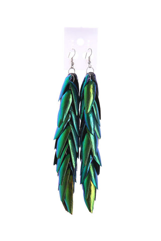 Jewel Beetle Wings Earrings - Natural History Direct Online Shop - 1