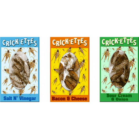 Edible Crickets | Real Insect Snacks | Pack of 3 boxes - Natural History Direct Online Shop - 1